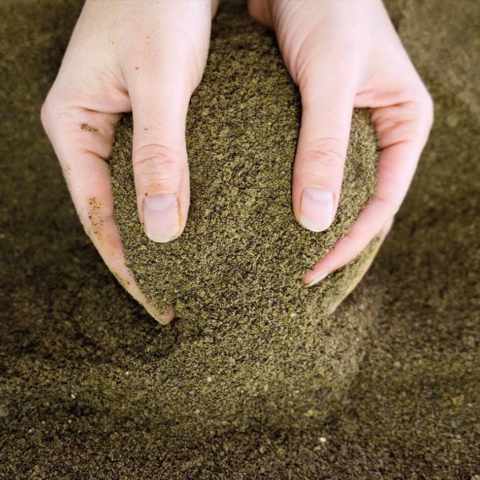 hanf-nacani-cbd-hund-snack-leckerlie-produktion-hanf-protein-pulver